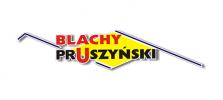 logo z cieniem